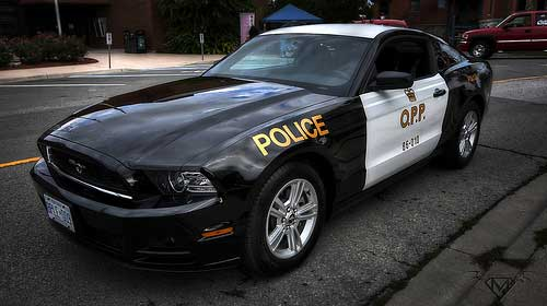 Police Car Mustang